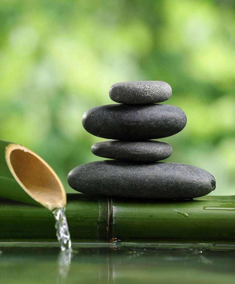 Η Θεραπευτική Γνώση ως εργαλείο Ευεξίας & Αρμονίας